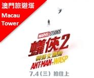 電影 - 蟻俠2:黃蜂女現身(3D)