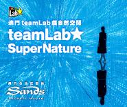 澳門teamLab超自然空間