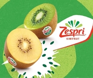【Pre-sale】New Zealand Zespri Golden Kiwi Jumbo22
