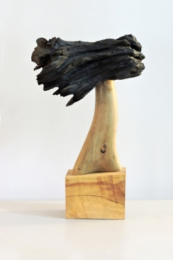 歷程 —— 安東尼奧・萊薩個人雕塑作品展